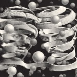 Escher. Bond of union, 1956. Lithography
