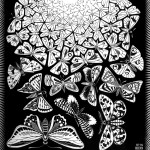 Escher. Butterflies, 1950. Engraving