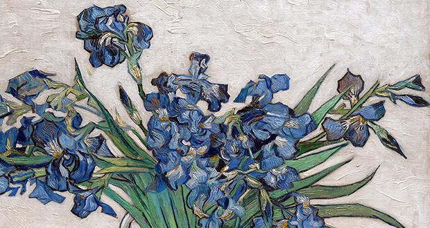 Van Gogh. Irises,1890 (detail)