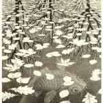 Escher. Three worlds, 1955. Lithography